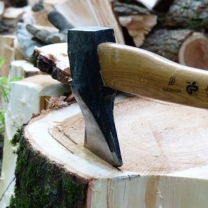 Samurai of the Wood-Cutting School